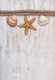 Seashells and rope on the old  wood. Marine background Royalty Free Stock Photo