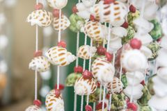 Seashells on rope thread for background. Colorful sea shells of various sizes of curtain for background, select focus with shallow depth of field Stock Images