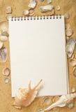 Seashells in sabbia Immagini Stock