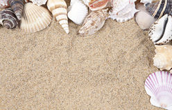 Seashells and Sand Border Royalty Free Stock Image