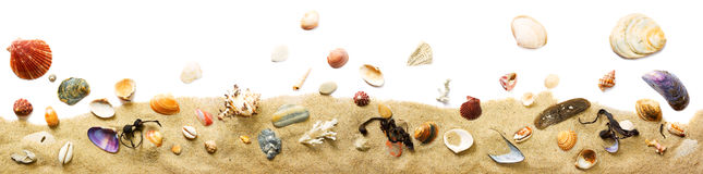 Seashells and sand border. Decorative border with seashells and sand on white stock photography