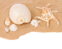 Seashells on sand border Stock Photos