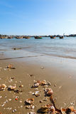 Seashells on the sand and fishing boats Royalty Free Stock Images
