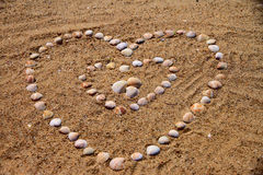 Seashells on the sand. In the form of heart Stock Image