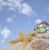 Seashells on sand with glass ball Royalty Free Stock Photos