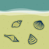 Seashells in the sand. Illustration Royalty Free Stock Photography