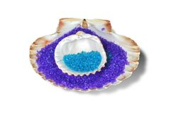 Seashells with sand Royalty Free Stock Images