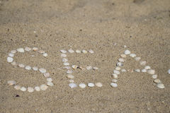 Seashells on the sand. Letters made ​​of shells on the sand royalty free stock photo