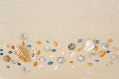 Seashells on sand. Sea summer vacation background with space for the text. Flat lay. Top view royalty free stock photography