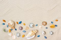 Seashells on sand. Sea summer vacation background with space for the text royalty free stock photography