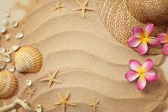 Seashells and sand Royalty Free Stock Photography