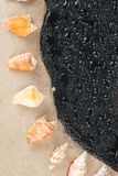 Seashells on the sand and water droplets Royalty Free Stock Photography