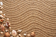 Seashells in the sand. Waves texture. Royalty Free Stock Image