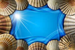 Seashells on Sea Abstract Background Stock Photography