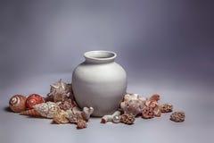 Seashells, sea stones and pearl around the pot Royalty Free Stock Photos