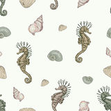 Seashells and seahorse seamless pattern. Hand drawn seashells and seahorse hippocampus seamless pattern vintage engraving style high detailed Royalty Free Stock Image