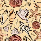 Seashells seamless Royalty Free Stock Images