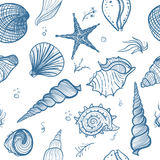 Seashells seamless pattern Stock Photography