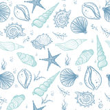 Seashells seamless pattern Royalty Free Stock Image