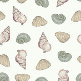 Seashells seamless pattern Royalty Free Stock Photography