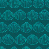 Seashells seamless pattern vector. Doodle background. Seashells seamless pattern vector. Doodle colorful background. Sketch objects marine illustration Stock Image