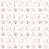 Seashells seamless pattern Royalty Free Stock Photo