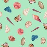 Seashells seamless vector pattern. Stock Photos