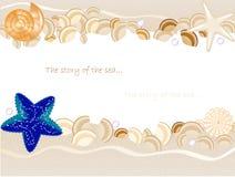 Seashells, seastar, pietre Fotografie Stock