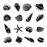 seashells set διάνυσμα Στοκ Εικόνα