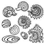 Seashells. Set of seashells. Decorative vector illustration Stock Image