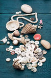 Seashells and sewing accessories Stock Photo