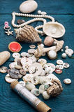 Seashells and sewing accessories Stock Image