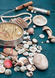 Seashells and sewing accessories Royalty Free Stock Image