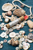 Seashells and sewing accessories Royalty Free Stock Photography