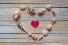 Seashells shaped heart on a wooden background top view Royalty Free Stock Images