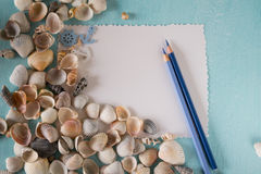 Seashells with sheets of paper  and pen on a blue background. Royalty Free Stock Photo
