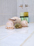 Seashells with spa set Royalty Free Stock Photos