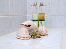 Seashells with spa set Royalty Free Stock Images