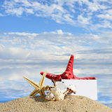 Seashells and starfish with blank card on sand beach Royalty Free Stock Photography