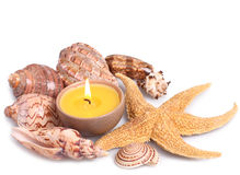 Seashells, starfish and candle Stock Photos