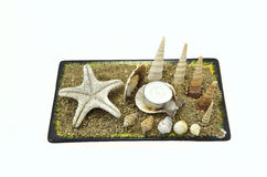 Seashells, starfish and candle Stock Photography