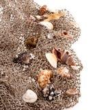 Seashells and starfish on the fishing network Stock Photography