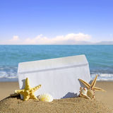 Seashells and starfish with open envelope with blank letter. On sand beach Royalty Free Stock Photo