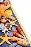 Seashells, starfish, pebbles on blue background isolated on whit Stock Image