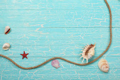 Seashells, starfish and a rope   on a background of painted boar Stock Photos