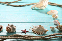 Seashells, starfish and a rope   on a background of painted boar Royalty Free Stock Image