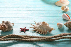 Seashells, starfish and a rope   on a background of painted boar Royalty Free Stock Images