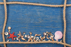 Seashells, starfish and a rope shaped frame on a background of p Stock Photos