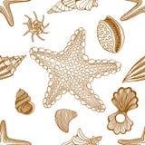 Seashells and starfish seamless pattern Stock Photos