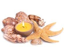 Seashells, Starfish und Kerze Stockfotos